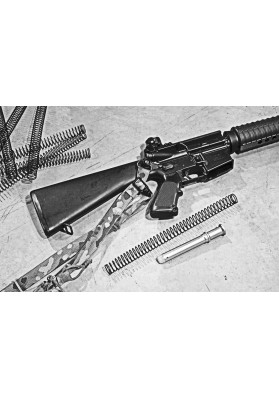 Enhanced Spring, Recoil Buffer, Action, Rifle